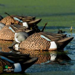 AVERY OUTDOORS GREENHEAD GEAR GHG PRO GRADE BLUE WINGED TEAL