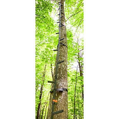 20 climbing sticks