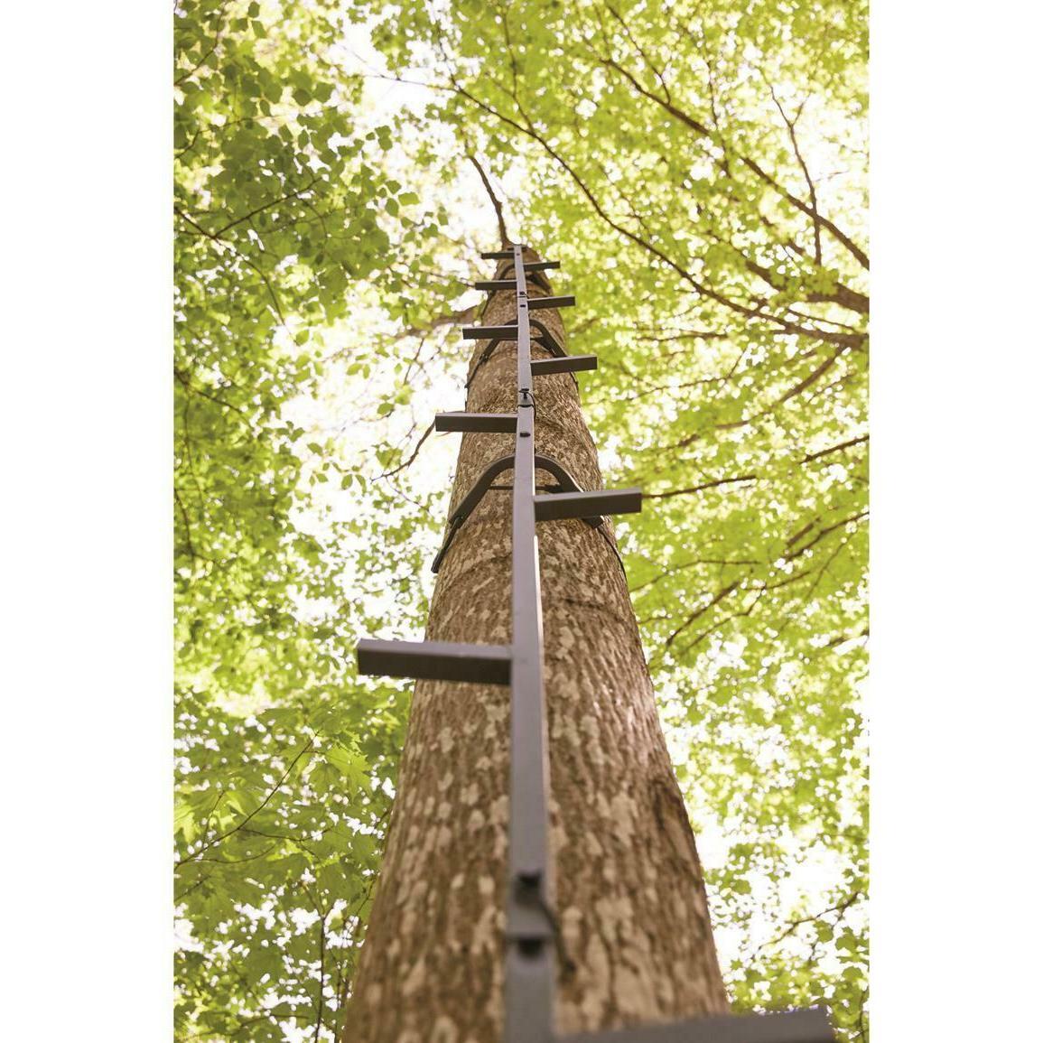 Guide Climbing Sticks Sturdy Steps All Steel