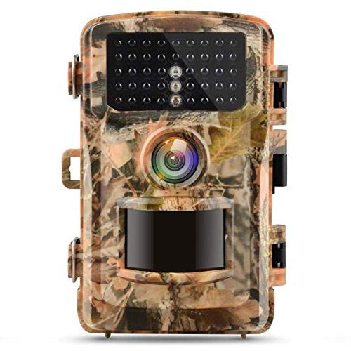 trail hunting cam wildlife game